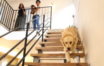盛岡市みたけ│光と風のリビングのお家の階段