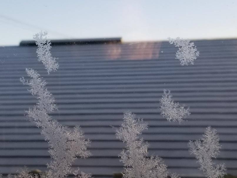 岩手で住宅の窓ガラスに霧氷 (3)